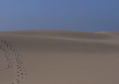 Sand steps – serenity